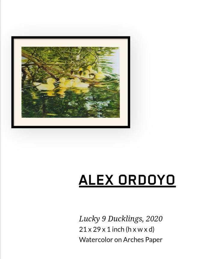 Lucky 9 Ducklings , 2020